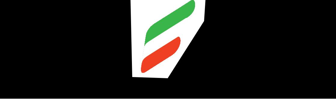Logo Italian angels
